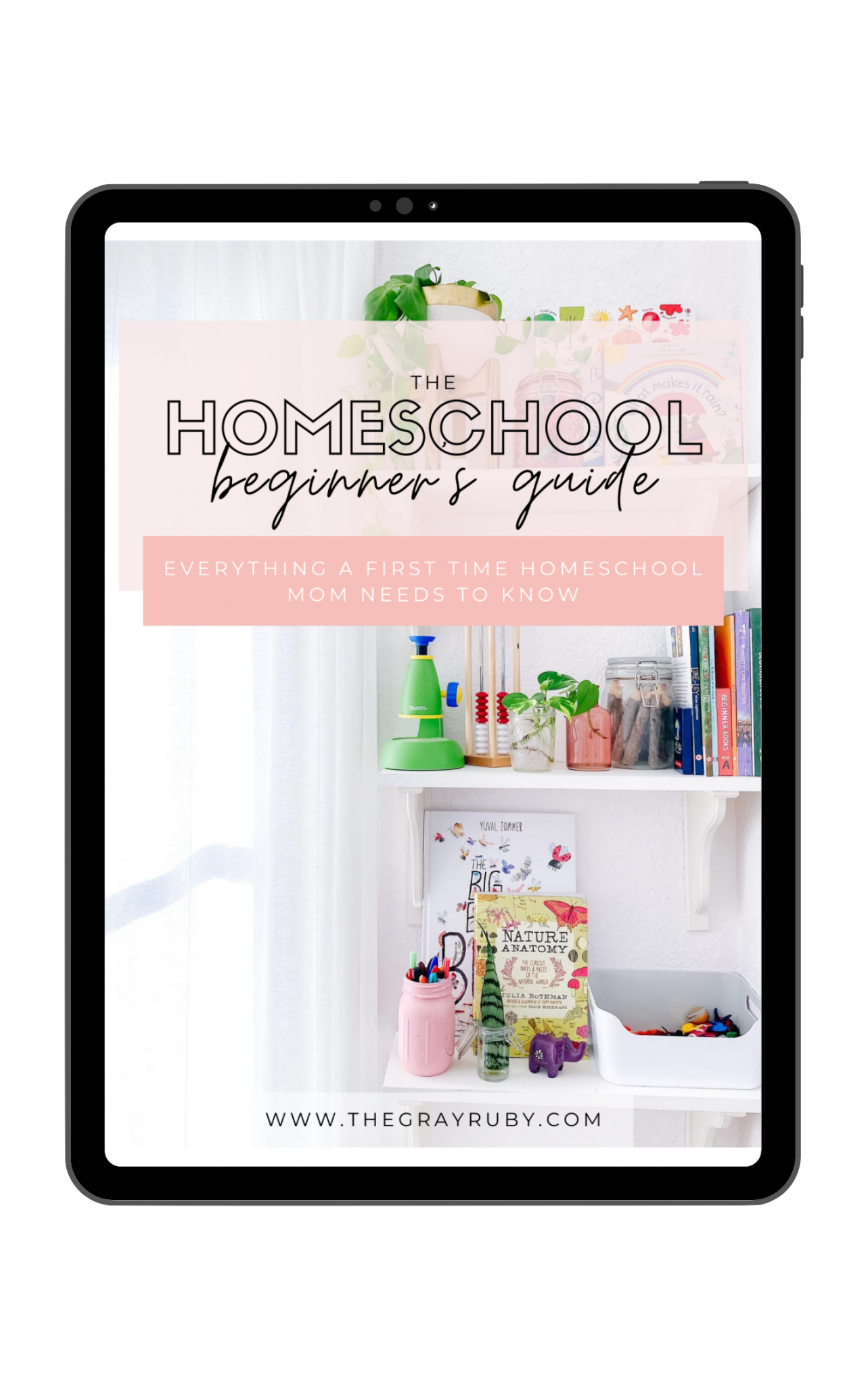homeschool start up guide
