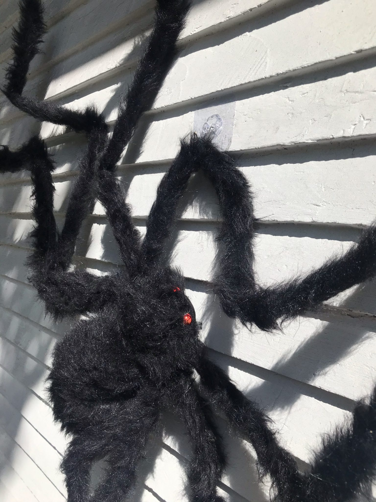 How to attach halloween spiders to the home