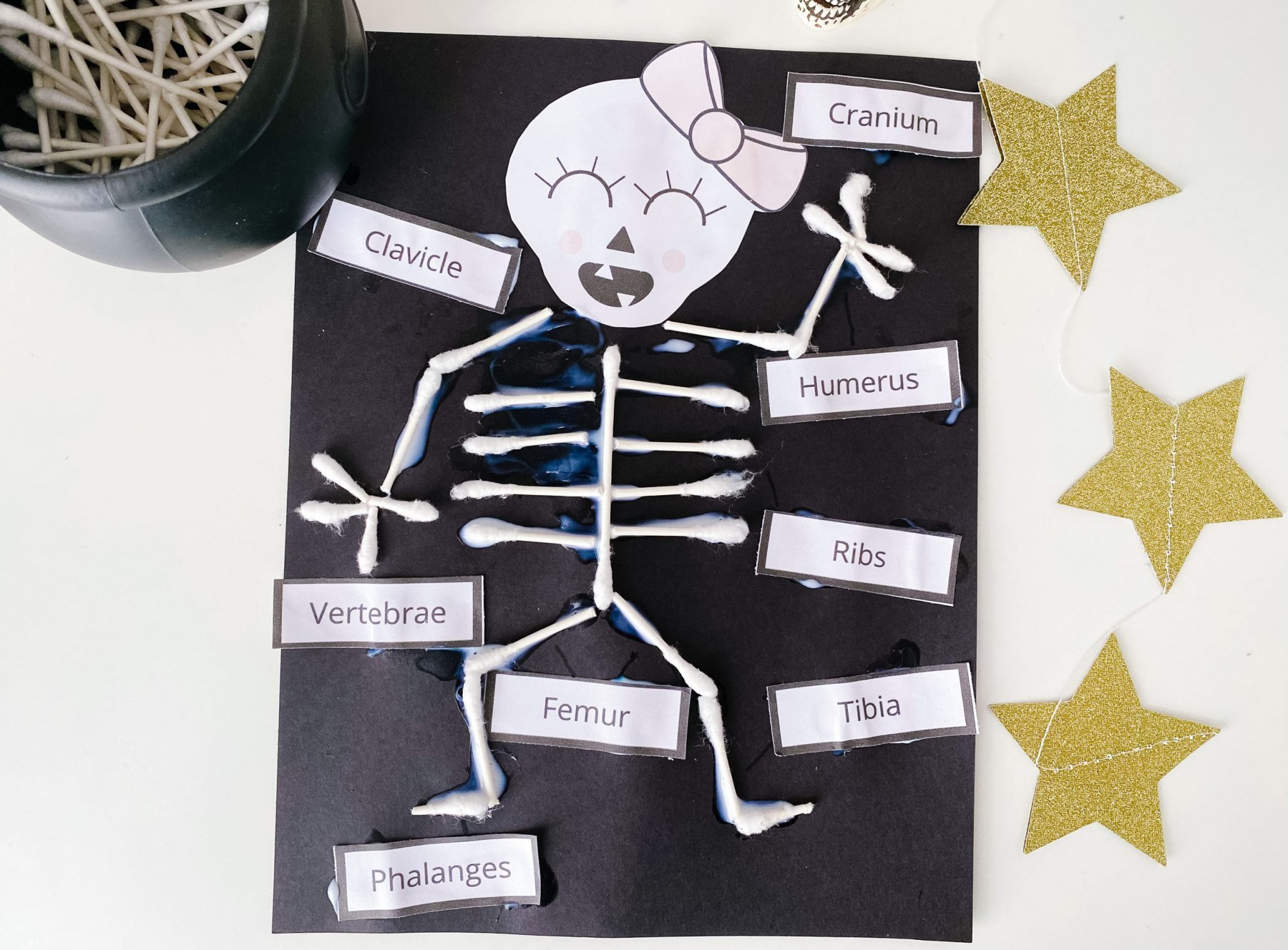 q tip skeleton with labels