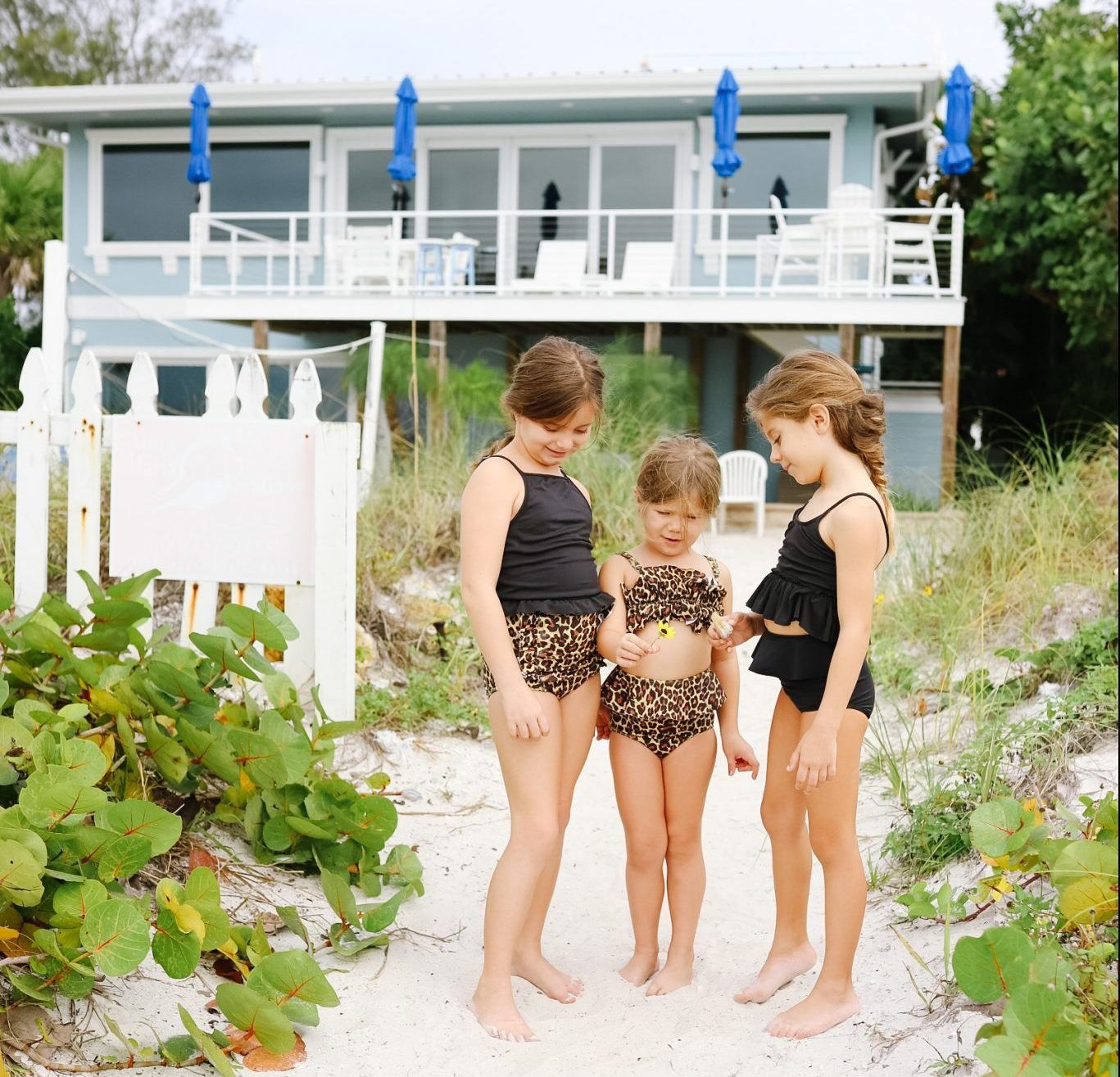 Blue Horizon resort - Anna Maria Island house for rent