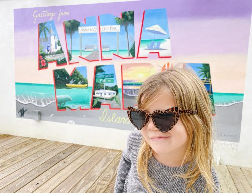Visiting Anna Maria Island – A Family Travel Guide